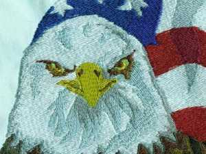 eagles-machine-embroidery-designs