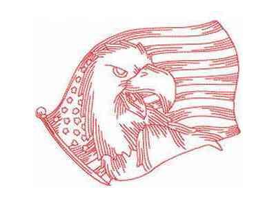 jn-american-eagles-machine-embroidery-designs