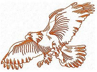 dd-realistic-eagles-machine-embroidery-designs
