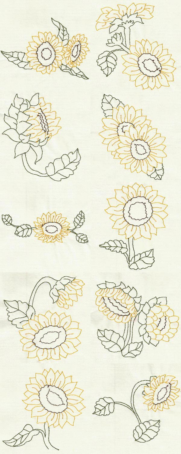 Color Line Sunflowers Embroidery Machine Design Details